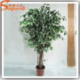 2015 China Fornecedor Artificial Plastic Indoor Bonsai Plants Tree