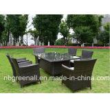 Presidenza esterna del rattan della Tabella del rattan della mobilia della mobilia del giardino