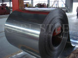 201/430 di Steel di acciaio inossidabile Coil per Decoration