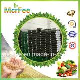 Fertilizante orgânico do extrato da alga da alta qualidade