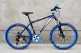 26 '' Bike горы стальной рамки/велосипед для изготовления Bike