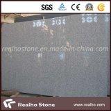 Lastra bianca del granito G603 del sesamo con il buon prezzo