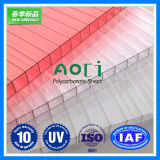 6mm Hollow 쌍둥이 Wall Polycarbonate Sheet 일요일 Sheet