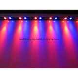 9W DC24V LED Wall Wash Light Lamp Washer Bar White Warm Red Green Blue Yellow RGB Light