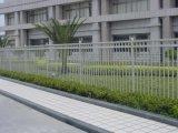 Оптовый декоративный сад ограждая, дешевая загородка ковки чугуна