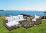 Muebles sintetizados de la rota del patio al aire libre del jardín