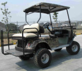 Caza eléctrica Buggy. Dos Asientos, carrito de golf, del cochecillo del camino, ATV