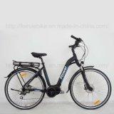 "bicicleta elétrica de 28 "" Wemen centrais do motor (TDB16Z)"