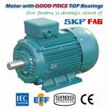 IEC Y2 da eficiência elevada que mina o motor elétrico