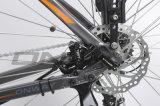 Btnのリチウム電池式の電気バイク