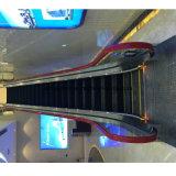 Handelsrolltreppe mit unbehaartem Edelstahl