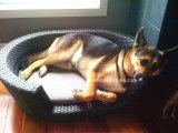 خارجيّ حديقة أثاث لازم كلب أريكة محبوبة أريكة داخليّة كلب أريكة محبوبة أريكة ([يتإكس192])