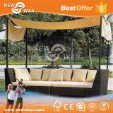 屋外の余暇の柳細工の家具/庭の家具(藤のソファー)