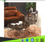 Tabella superiore di marmo moderna del Tabella dell'acciaio inossidabile/di tè/tavolino da salotto di vetro CT18