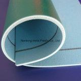 Plancher imperméable à l'eau et coloré de vinyle de PVC pour les enfants d'intérieur