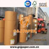 Bobines de papier excentré de pâte de bois de Vierge avec la bonne qualité à vendre
