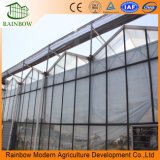 산업 다중 경간 Polytunnel 플라스틱 폴리탄산염 유리 온실