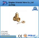 Válvula de esfera de bronze rapidamente conetada de bronze da válvula de esfera ISO228 da qualidade agradável