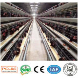 Gaiola galvanizada do fio para a gaiola da galinha da exploração agrícola de galinha