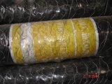 Rete metallica della maglia della rete fissa di Hexaognal
