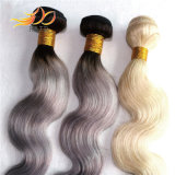 100%のビルマ人のRemyの毛2の調子の薄い色の毛の編むこと