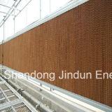 Greenhouse (7090/7060/5090)를 위한 증발 Cooling Pad