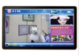 LCD 위원회 디지털 표시 장치 잘 고정된 Touchscreen 모니터 간이 건축물을 광고하는 55 인치