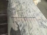 رخاميّة [بينك] [أربسكتا] بيضاء حجارة رخام ألواح وقراميد