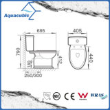 Toilette en céramique en deux pièces affleurante duelle de lavage à grande eau (ACT5222)