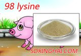 Bonne qualité pour la lysine 98%