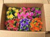 Piante e fiori di plastica artificiali di piccole piante Gu2017010 dei bonsai