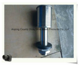 Boquillas del filtro de la boquilla/de arena del filtro de los Ss 304 de la alta calidad (dirigir la fabricación)