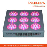 Lámpara Growing de la planta LED de la Nova 450watt T9 de Evergrow