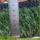 أكثر طبيعيّة ينظر عشب زاويّة اصطناعيّة مع [كمبتيتيف بريس]