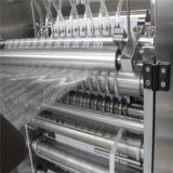 Sacchetto Ice Lolly Four-Side Sealing e Multi-Line Packing Machine