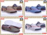 La toile Shoes2013 (SD8122) nouvellement modèles des hommes