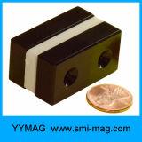 Het epoxy Met een laag bedekte Blok van de Magneet van het Neodymium voor het Deel van de Generator