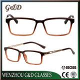 Populair In het groot Tr90 Frame 7042 van de Glazen van het Oogglas van Eyewear Optisch