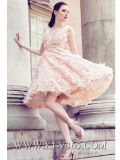 Europäisches Frauen-Dame-Form-Hochzeits-Abend-Partei-Kleid