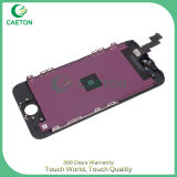 Nagelneues Hight Quality LCD Screen für iPhone 5s