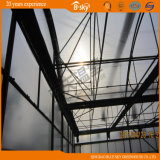 Film Roof Greenhouse mit Polycarbonate Board Wall