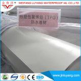 Material impermeable de Tpo de la alta calidad de la fuente de la fábrica, membrana de impermeabilización de la poliolefina termoplástica