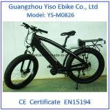 Bici gorda eléctrica de Fatboy con 750W 20ah