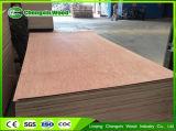 Folhas laminadas Okoume ambientais da madeira compensada 4X8 do fabricante do ouro de China