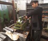 Engranaje de gusano de la rueda de engranaje del eje de engranaje de la pieza del alimentador de Belarus