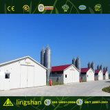 Het goedkope Stabiele Geprefabriceerde Landbouwbedrijf van de Kip van het Huis van het Gevogelte