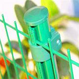 Omheining van het Comité van het Netwerk van China 3D Gelaste die voor Bouw wordt gebruikt