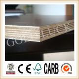 El papel sobrepuso la madera contrachapada