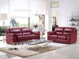 Möbel-modernes Italien-ledernes Sofa (894#)