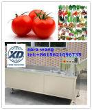 Obst und Gemüse Ozone Cleaning Machine